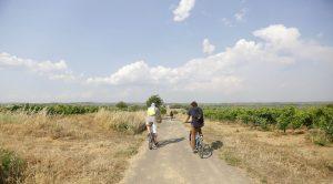 Team-building rallye vélo